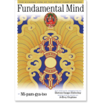 Fundamental Mind